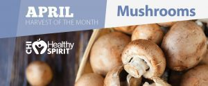 Yummy Mushrooms: Recipes