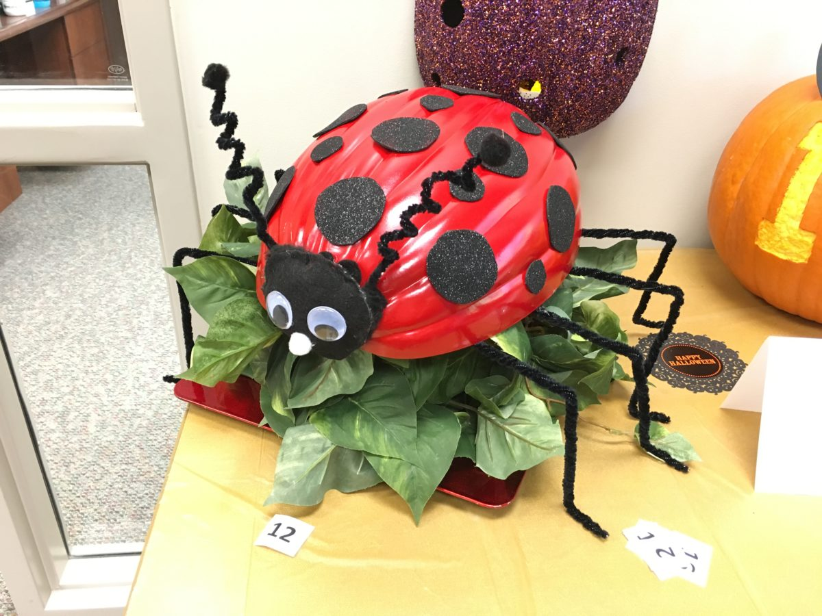 Halloween Pumpkin Contest Winners At Heart Clinic One